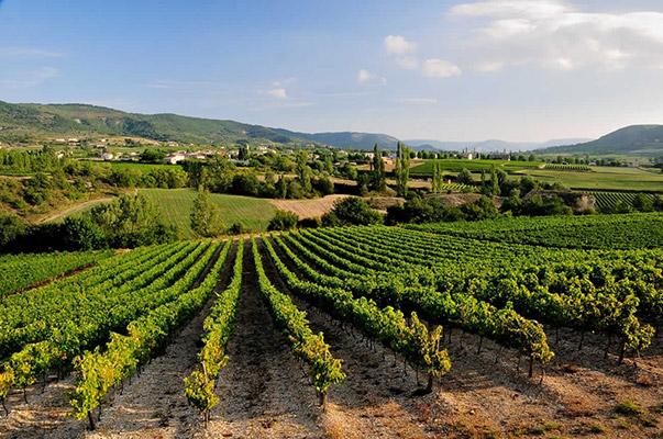 vin Côtes du Rhône vin Ardèche