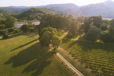 Circuit viticole chateaux