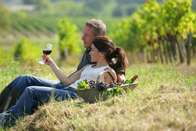 Circuit viticole découverte